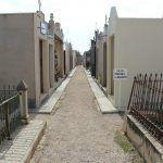 Ayuntamiento de Novelda ayto-2-2-150x150 El Cementeri es prepara per a la festivitat de Tots els Santos