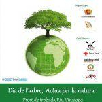 Ayuntamiento de Novelda Cartel-reforesta-web-150x150 Reforestación popular en el Vinalopó para celebrar el Día del Árbol