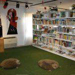Ayuntamiento de Novelda ayto-biblio-1-150x150 La Biblioteca reabre en la Casa de Cultura