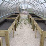 Ayuntamiento de Novelda 02-14-150x150 Los Huertos Ecológicos Municipales ponen en funcionamiento un nuevo invernadero