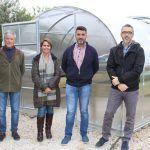 Ayuntamiento de Novelda 03-9-150x150 Los Huertos Ecológicos Municipales ponen en funcionamiento un nuevo invernadero