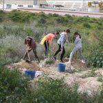 Ayuntamiento de Novelda 02-6-150x150 Medi Ambient realitza la tradicional Reforestació Escolar