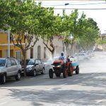 Ayuntamiento de Novelda 05-1-150x150 Els agricultors de Novelda trauen els seus tractors al carrer per a col·laborar en les tasques de desinfecció