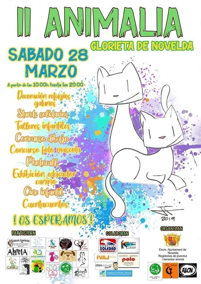 Ayuntamiento de Novelda 87529542_1520093701489666_4427971270537117696_n Proyecto Chanchullo