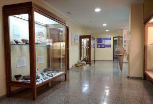 Ayuntamiento de Novelda Museo-02-300x205 Museo Histórico-Artístico de la ciudad de Novelda