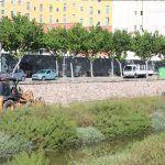Ayuntamiento de Novelda 01-12-150x150 Medi Ambient fa treballs de desbrossament en el llit del Vinalopó