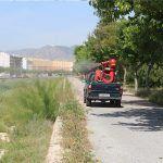 Ayuntamiento de Novelda 03-3-150x150 Salut inicia la campanya estival de tractament contra el mosquit