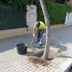 Ayuntamiento de Novelda 05-7-150x150 Mantenimiento de Ciudad realiza trabajos de limpieza y desbroce vial