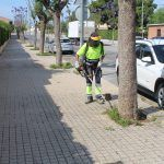 Ayuntamiento de Novelda 06-7-150x150 Mantenimiento de Ciudad realiza trabajos de limpieza y desbroce vial