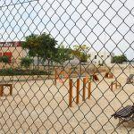 Ayuntamiento de Novelda 03-12-150x150 Finalitzen les obres de millora i modernització del polígon de Santa Fe