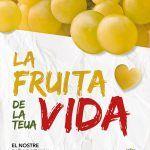 """Ayuntamiento de Novelda 03-150x150 """"La fruita de la teua vida"""", campaña de apoyo y promoción para la uva de mesa embolsada"""