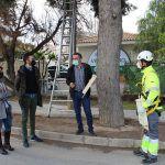 Ayuntamiento de Novelda 01-29-150x150 Novelda instal·la una trentena de caixes refugie de ratapinyades per a ajudar en el control de plagues d'insectes