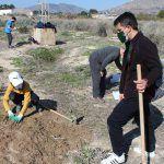 Ayuntamiento de Novelda 02-26-150x150 Medio Ambiente pone en marcha una nueva campaña de reforestación escolar