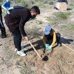 Ayuntamiento de Novelda 04-16-150x150 Medio Ambiente pone en marcha una nueva campaña de reforestación escolar