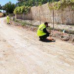 Ayuntamiento de Novelda 06-3-150x150 Comienzan las obras de adecuación del Camí de les Coves
